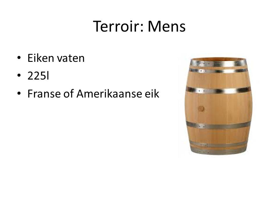 Terroir: Mens Eiken vaten 225l Franse of Amerikaanse eik