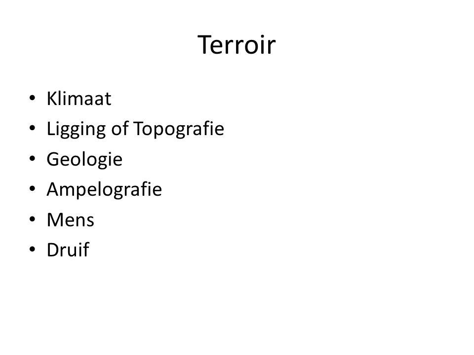 Terroir Klimaat Ligging of Topografie Geologie Ampelografie Mens Druif