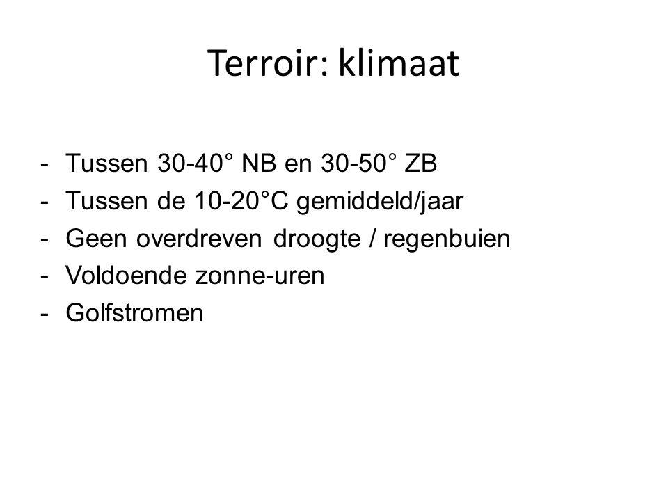 Terroir: klimaat Tussen 30-40° NB en 30-50° ZB