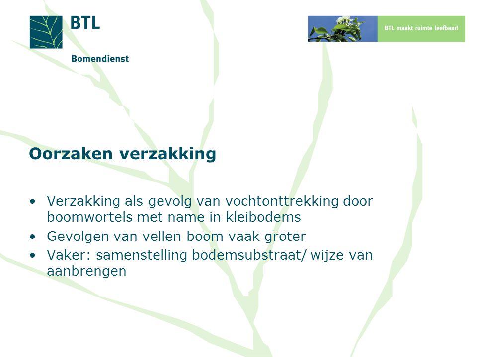 Oorzaken verzakking Verzakking als gevolg van vochtonttrekking door boomwortels met name in kleibodems.