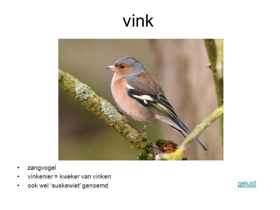 vink geluid zangvogel vinkenier = kweker van vinken