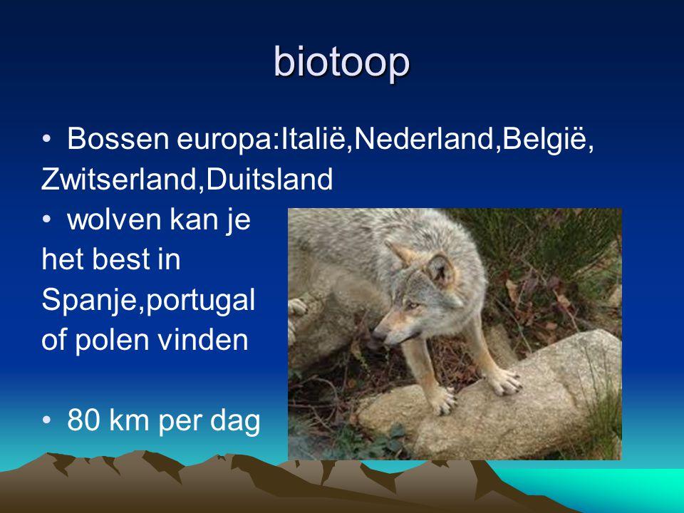 biotoop Bossen europa:Italië,Nederland,België, Zwitserland,Duitsland