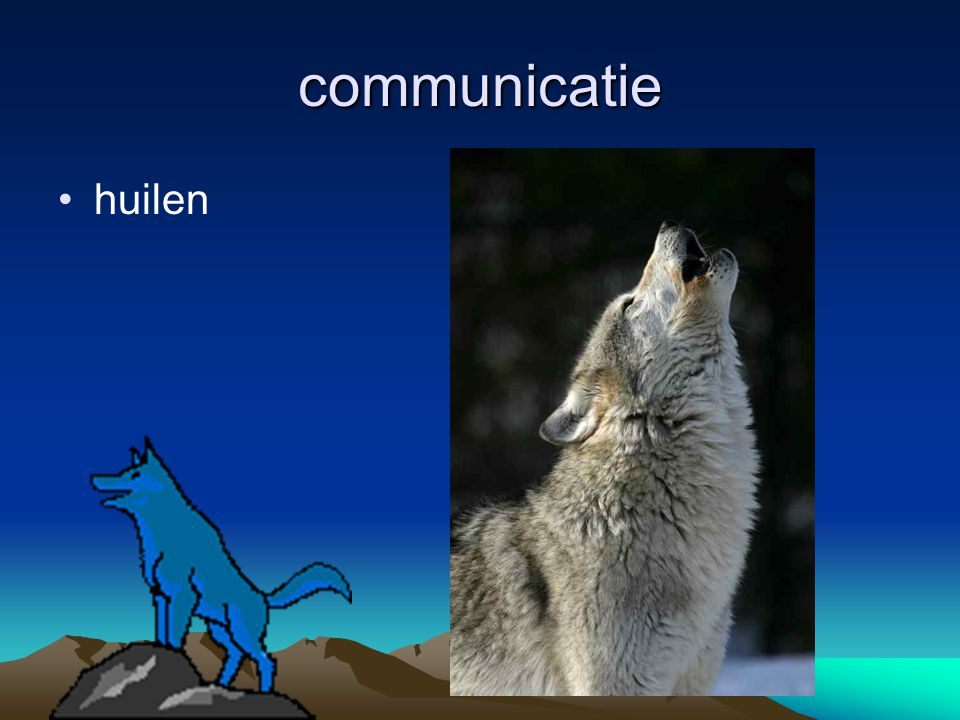 communicatie huilen