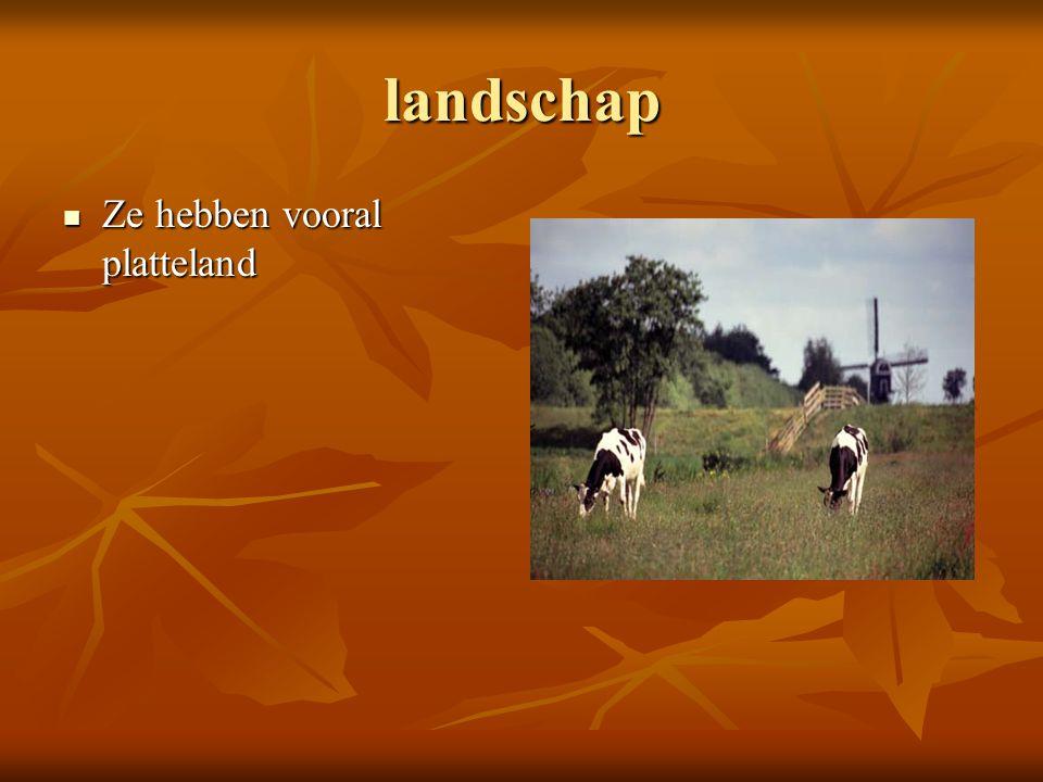 landschap Ze hebben vooral platteland
