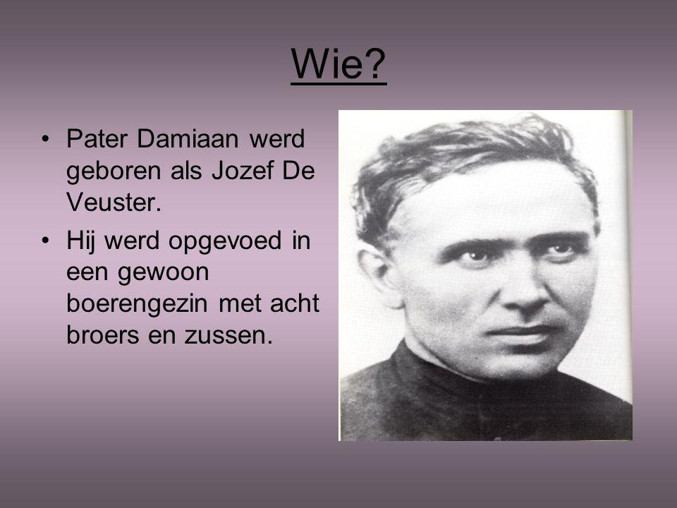 Wie Pater Damiaan werd geboren als Jozef De Veuster.