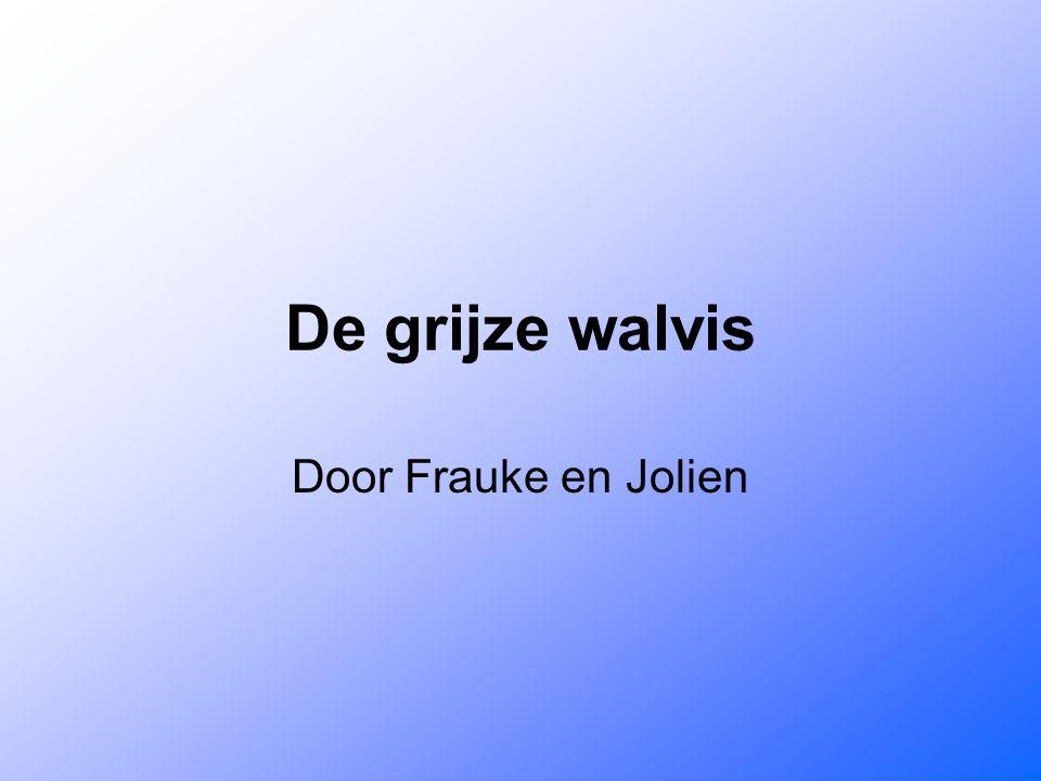 De grijze walvis Door Frauke en Jolien