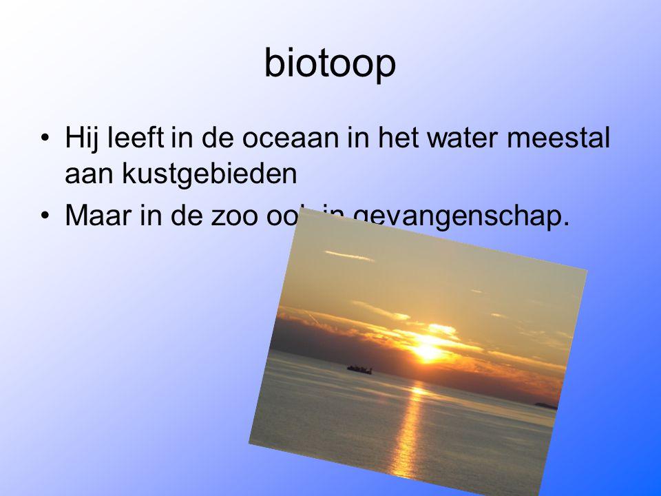 biotoop Hij leeft in de oceaan in het water meestal aan kustgebieden