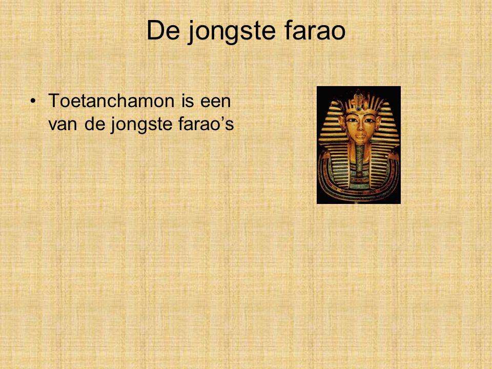 De jongste farao Toetanchamon is een van de jongste farao's