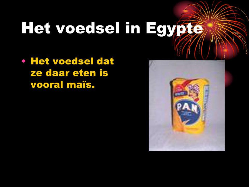 Het voedsel in Egypte Het voedsel dat ze daar eten is vooral maïs.