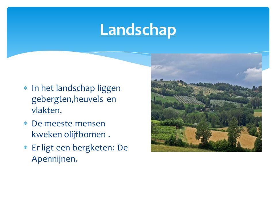 Landschap In het landschap liggen gebergten,heuvels en vlakten.