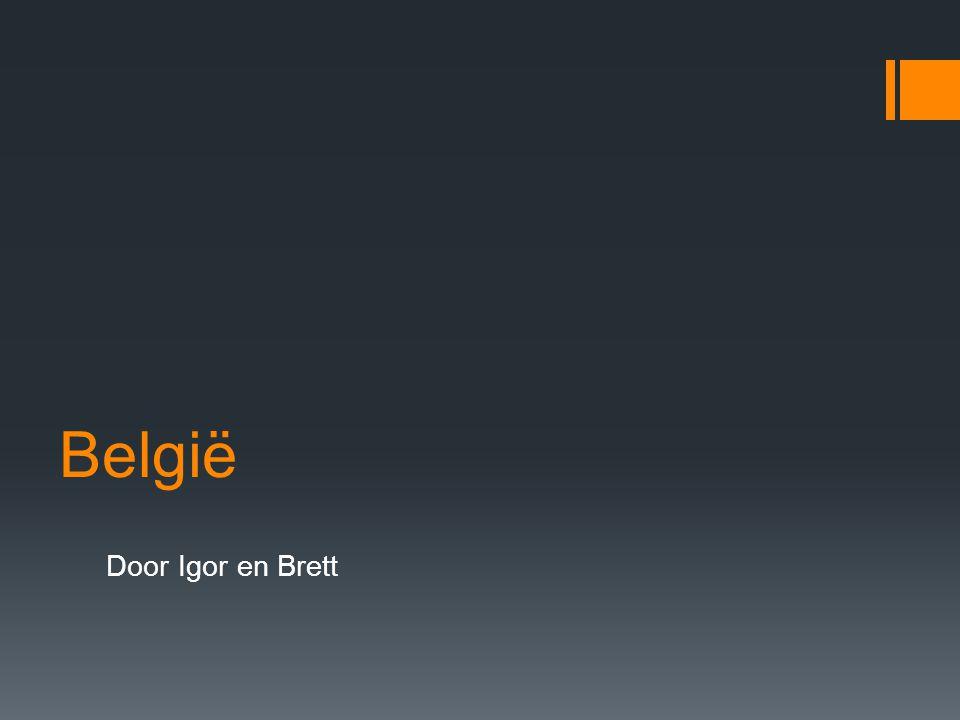 België Door Igor en Brett Hallo ik ben igor en ik ben brett