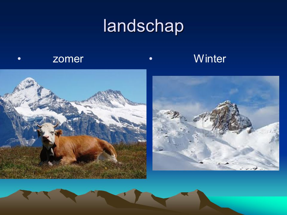 landschap zomer Winter Landschap.