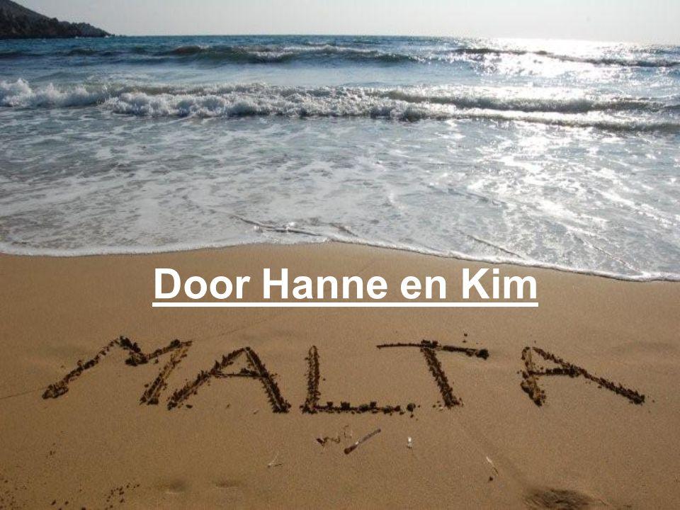 Door Hanne en Kim