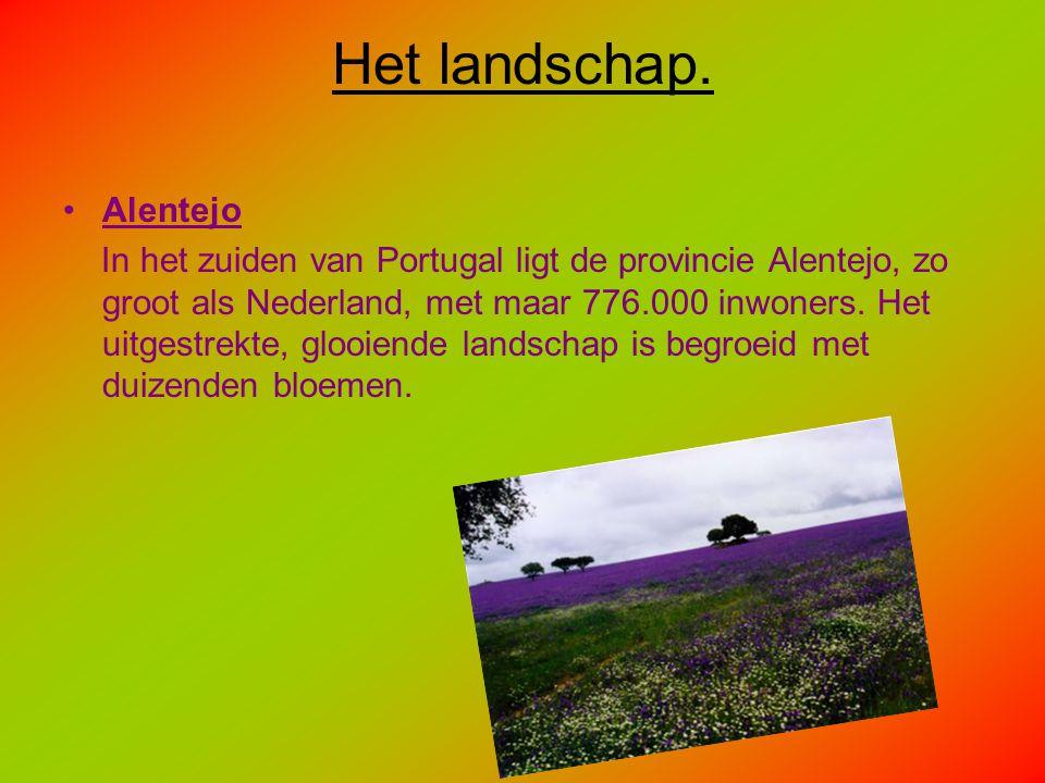 Het landschap. Alentejo
