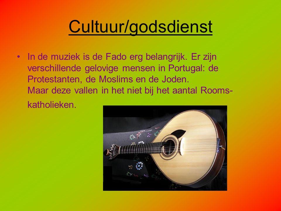 Cultuur/godsdienst