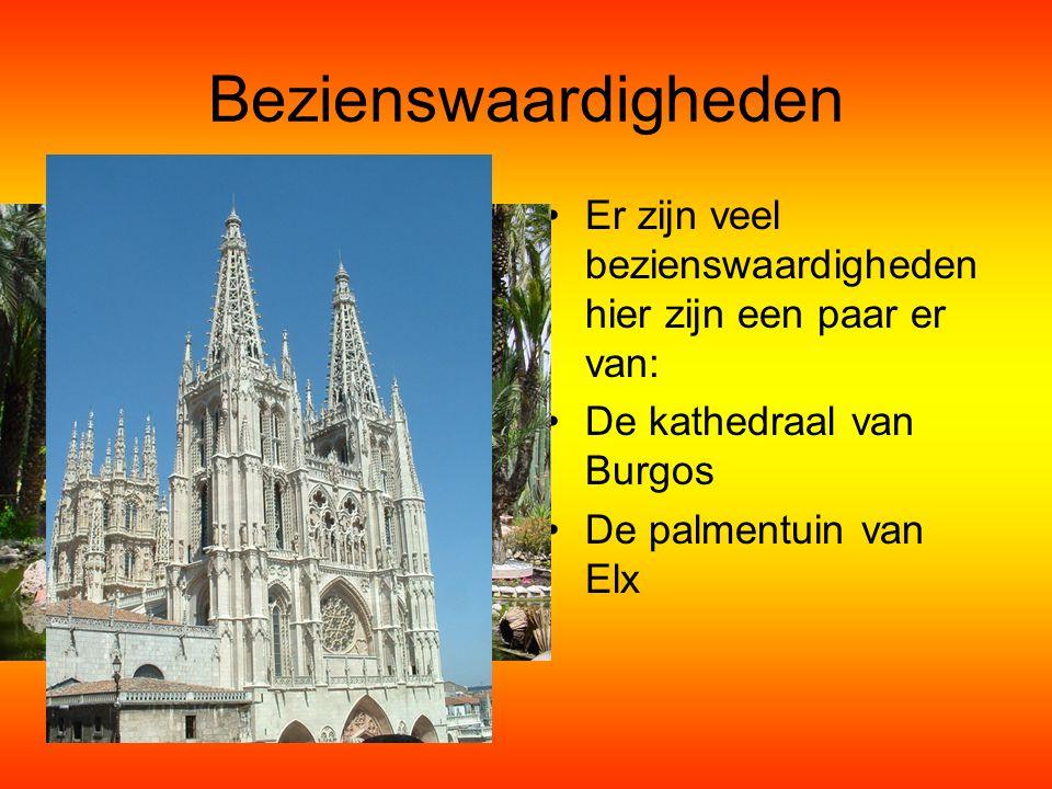 Bezienswaardigheden Er zijn veel bezienswaardigheden hier zijn een paar er van: De kathedraal van Burgos.