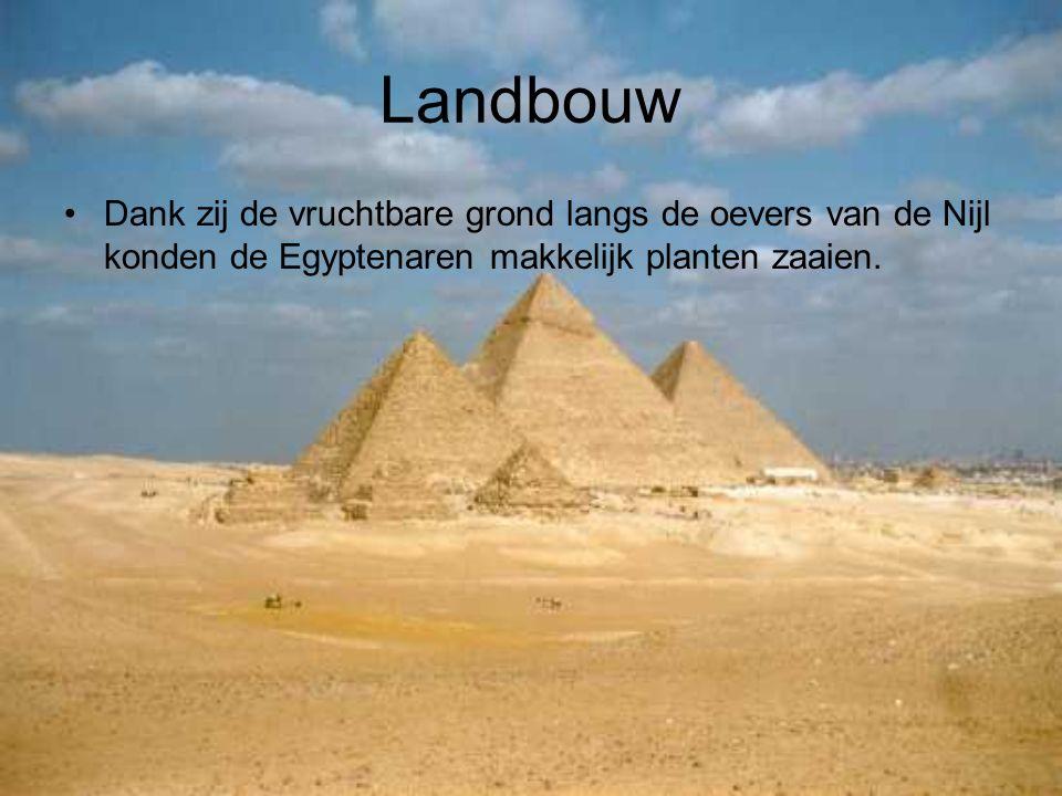 Landbouw Dank zij de vruchtbare grond langs de oevers van de Nijl konden de Egyptenaren makkelijk planten zaaien.