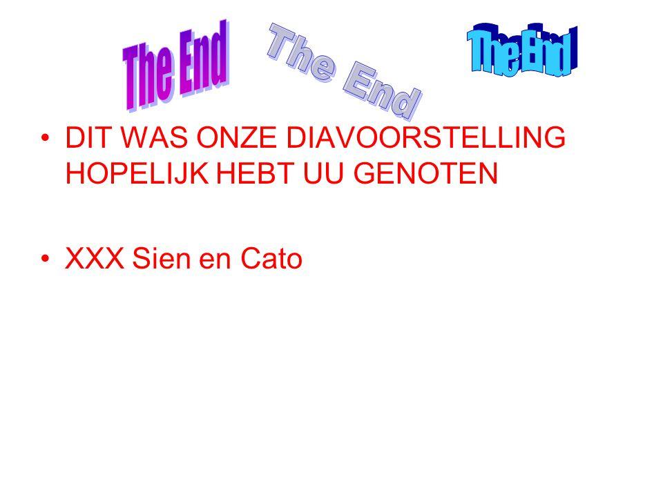 The End The End The End DIT WAS ONZE DIAVOORSTELLING HOPELIJK HEBT UU GENOTEN XXX Sien en Cato
