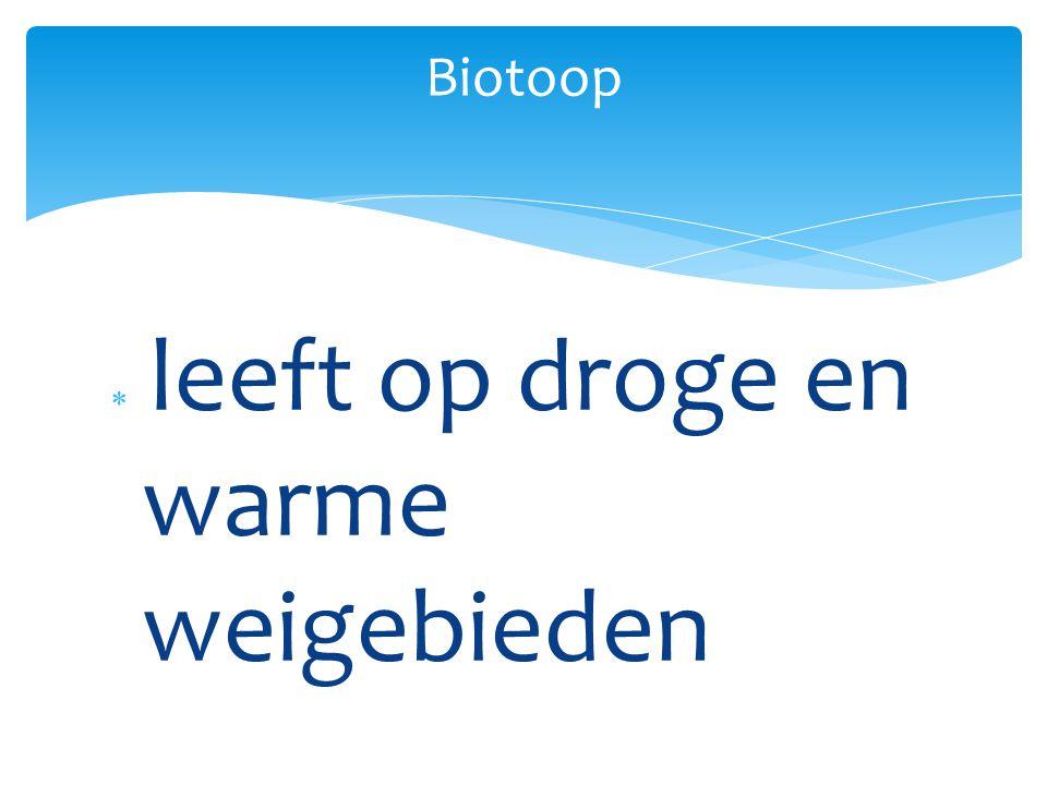 Biotoop leeft op droge en warme weigebieden