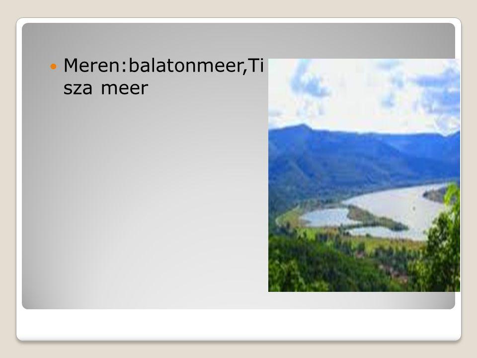 Meren:balatonmeer,Ti sza meer