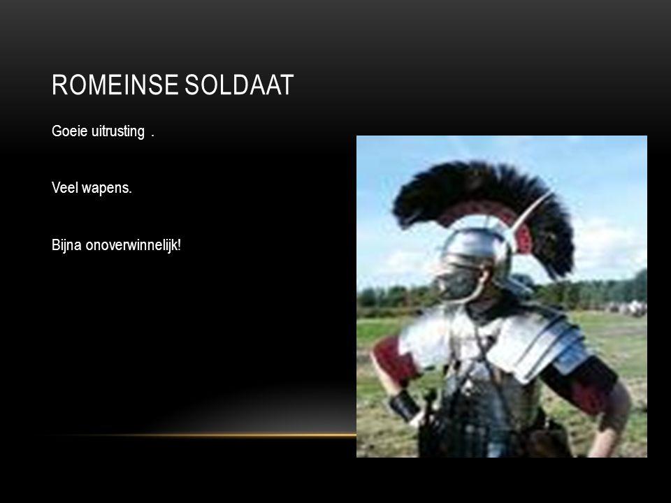 Romeinse soldaat Goeie uitrusting . Veel wapens. Bijna onoverwinnelijk!