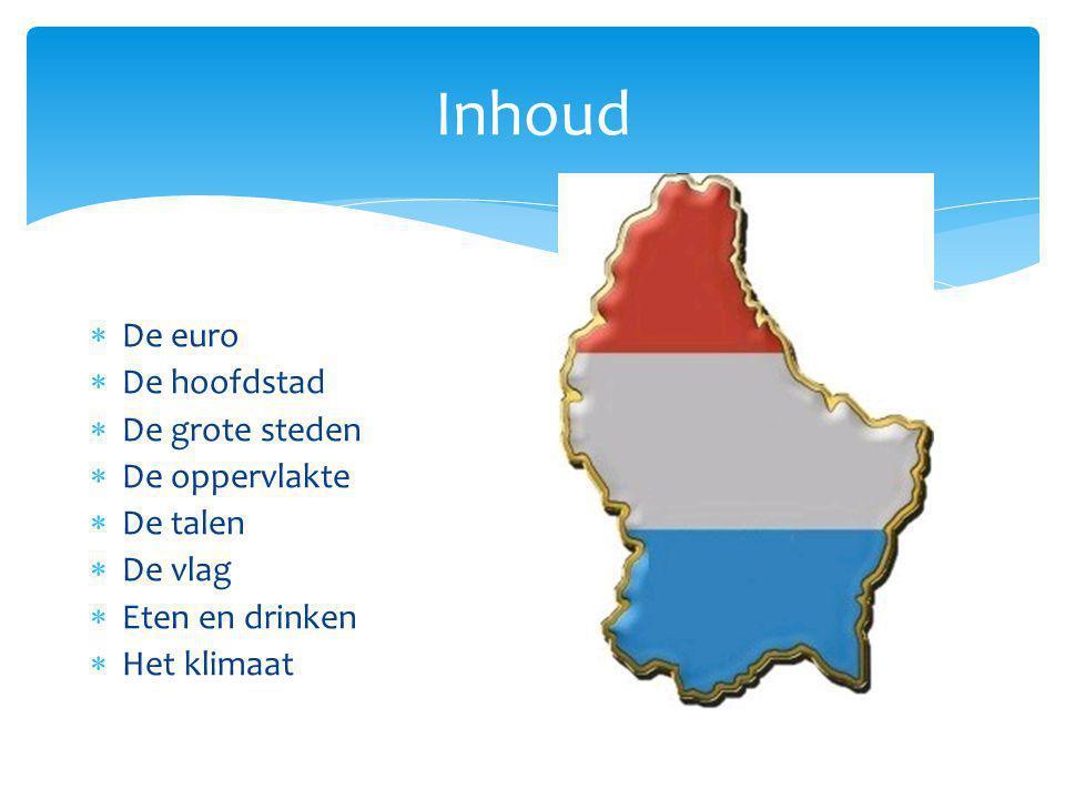 Inhoud De euro De hoofdstad De grote steden De oppervlakte De talen