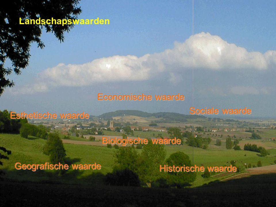 Landschapswaarden Economische waarde. Sociale waarde. Esthetische waarde. Biologische waarde. Geografische waarde.