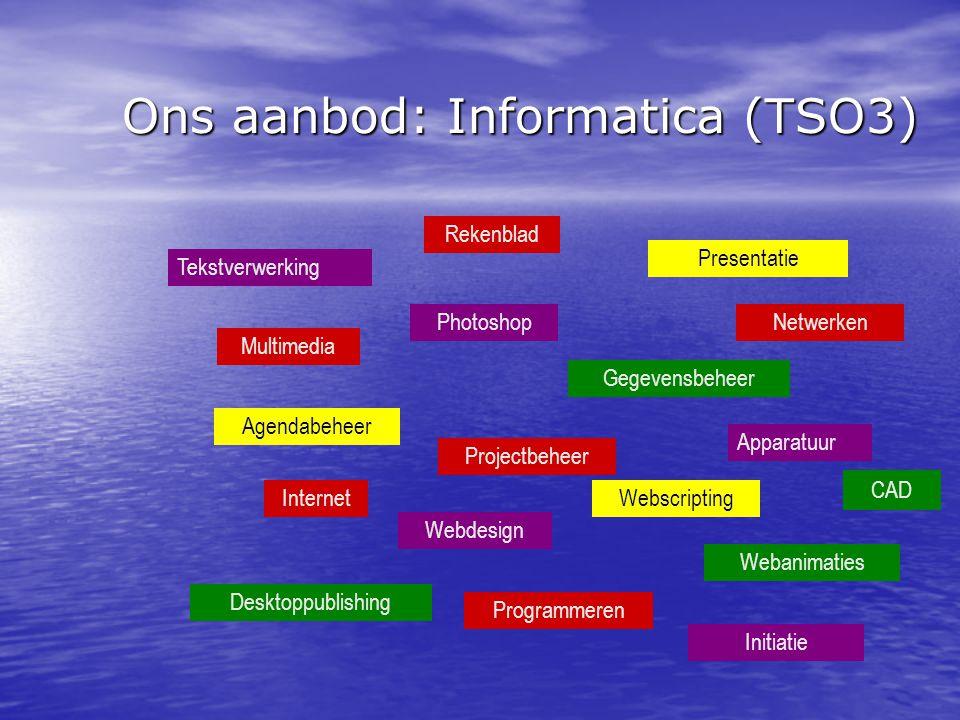 Ons aanbod: Informatica (TSO3)