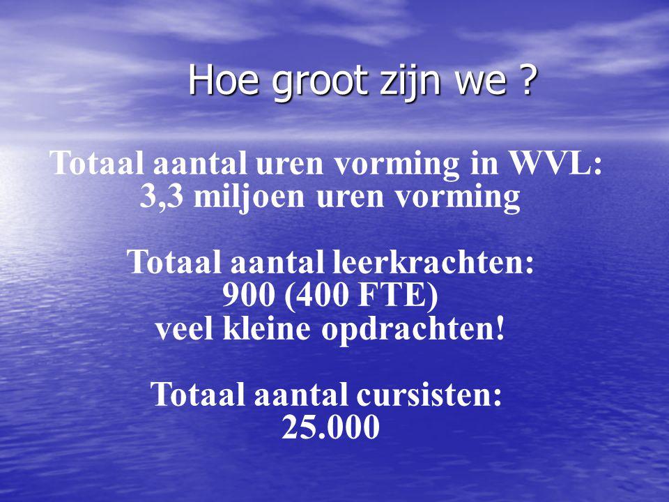 Hoe groot zijn we Totaal aantal uren vorming in WVL: