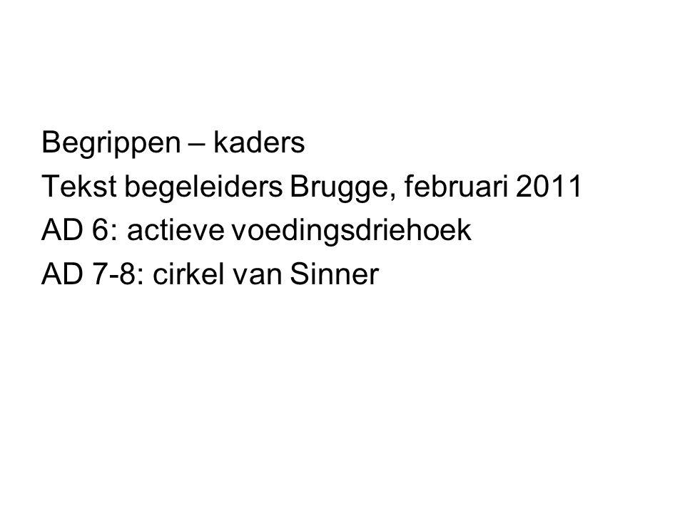 Begrippen – kaders Tekst begeleiders Brugge, februari 2011.
