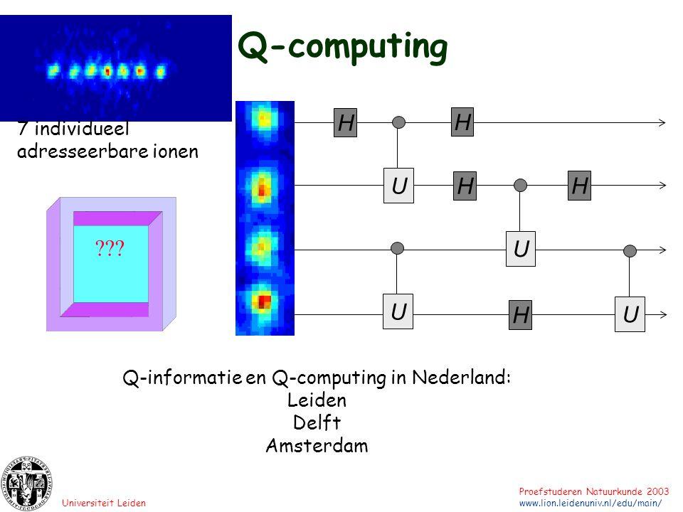 Q-informatie en Q-computing in Nederland: