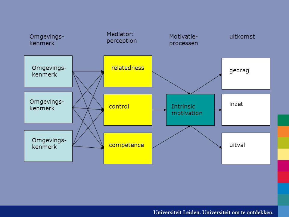 Mediator: perception Omgevings-kenmerk. Motivatie- processen. uitkomst. relatedness. control. competence.