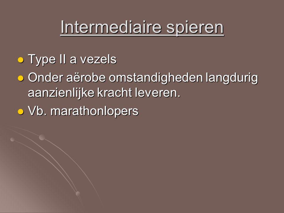 Intermediaire spieren