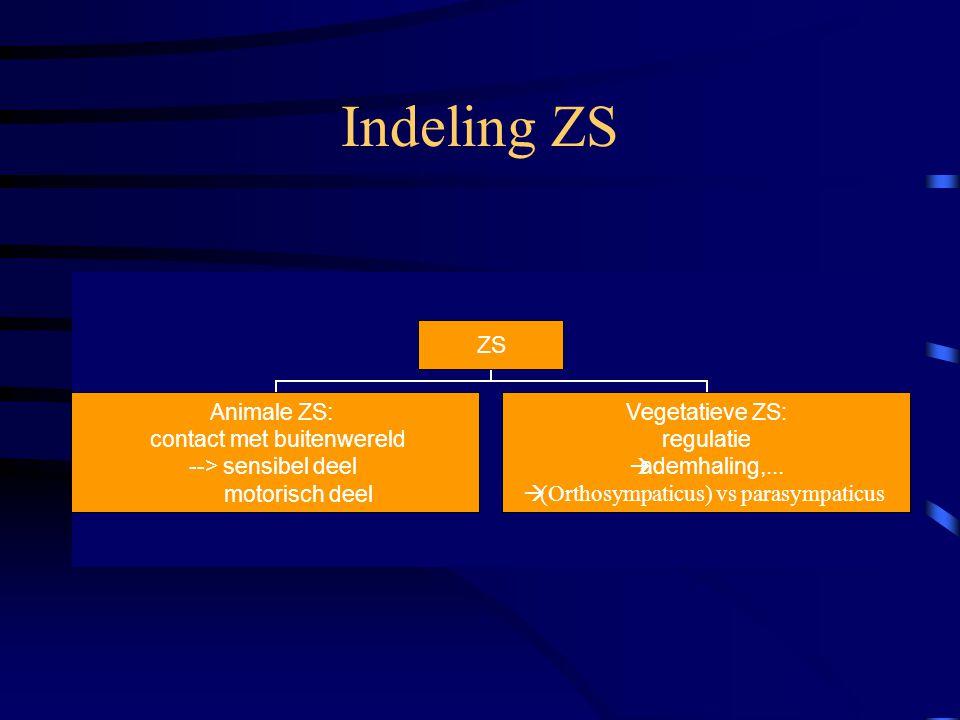 Indeling ZS