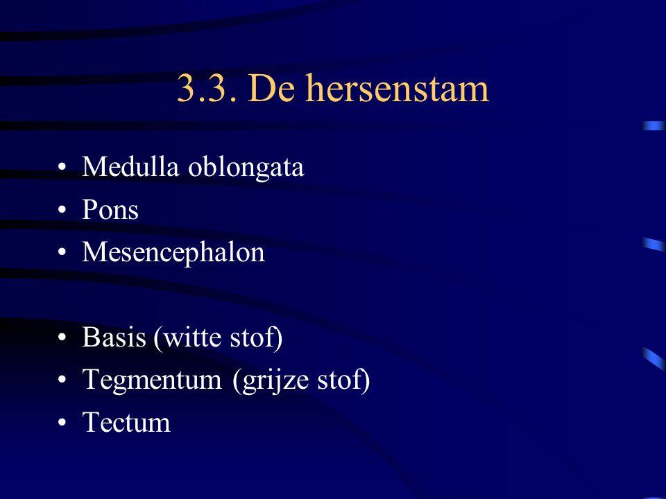 3.3. De hersenstam Medulla oblongata Pons Mesencephalon