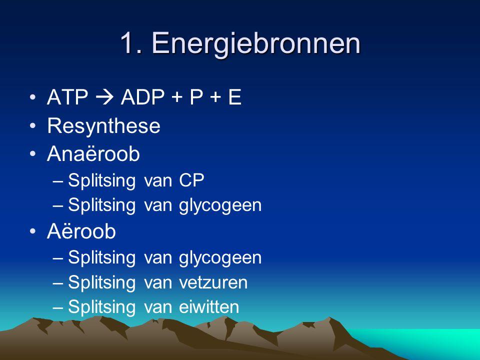1. Energiebronnen ATP  ADP + P + E Resynthese Anaëroob Aëroob