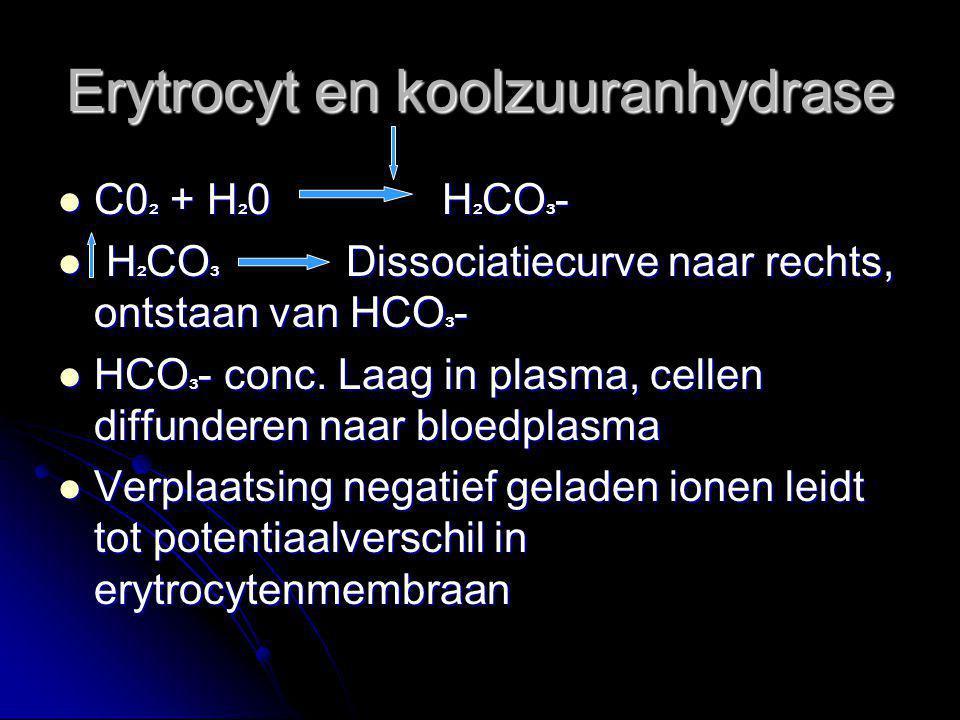 Erytrocyt en koolzuuranhydrase