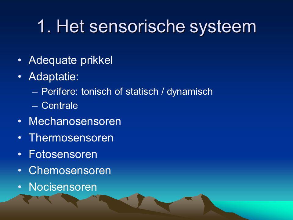 1. Het sensorische systeem