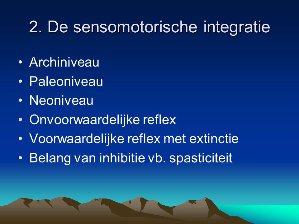 2. De sensomotorische integratie