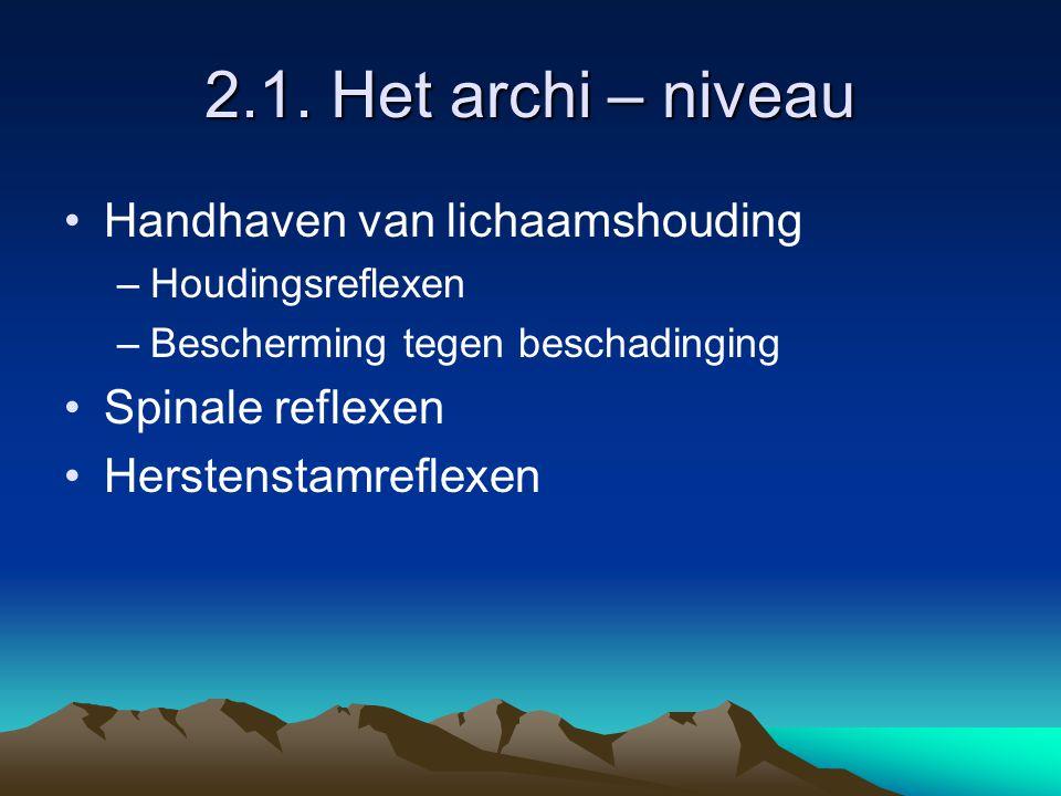 2.1. Het archi – niveau Handhaven van lichaamshouding Spinale reflexen