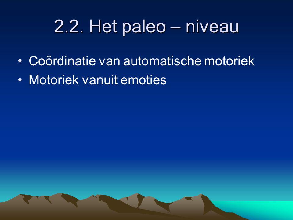 2.2. Het paleo – niveau Coördinatie van automatische motoriek