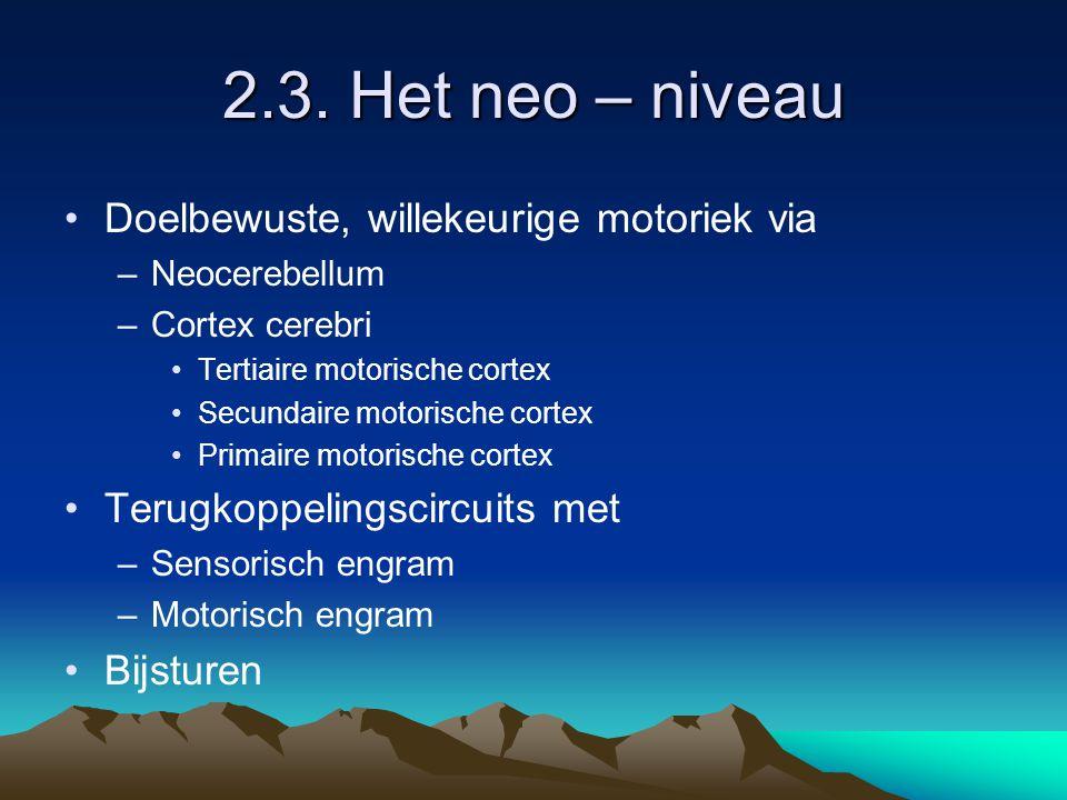 2.3. Het neo – niveau Doelbewuste, willekeurige motoriek via