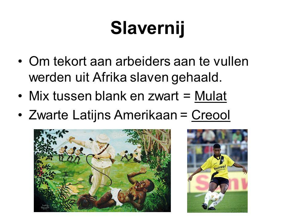 Slavernij Om tekort aan arbeiders aan te vullen werden uit Afrika slaven gehaald. Mix tussen blank en zwart = Mulat.