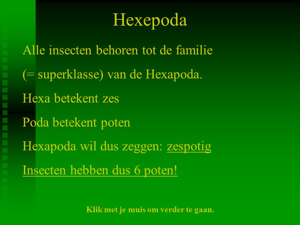 Hexepoda Alle insecten behoren tot de familie