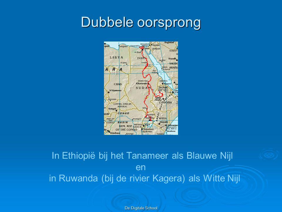 Dubbele oorsprong In Ethiopië bij het Tanameer als Blauwe Nijl en