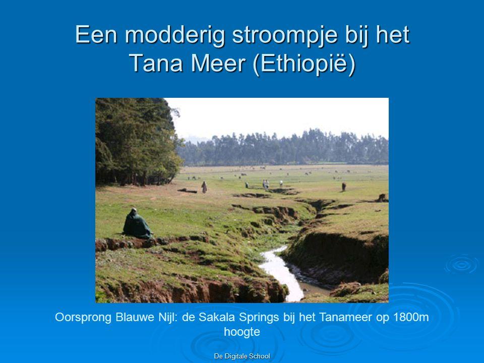 Een modderig stroompje bij het Tana Meer (Ethiopië)