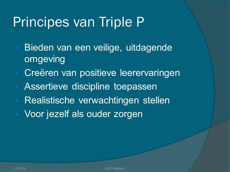 Principes van Triple P Bieden van een veilige, uitdagende omgeving