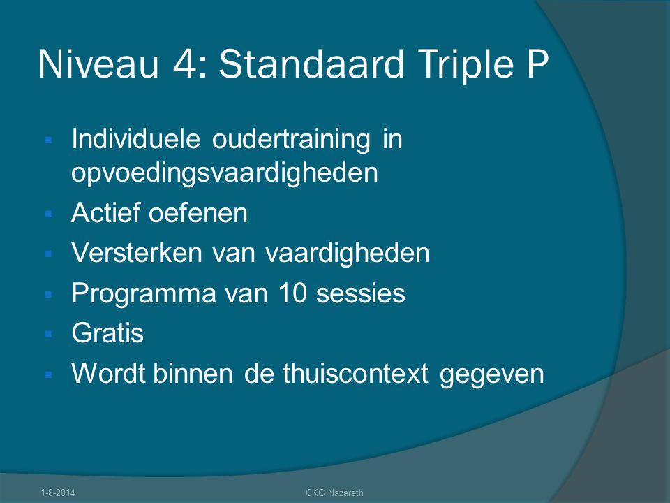 Niveau 4: Standaard Triple P