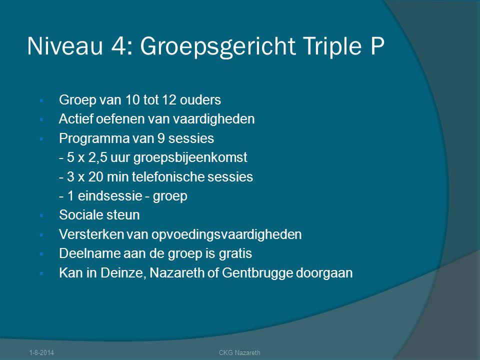 Niveau 4: Groepsgericht Triple P