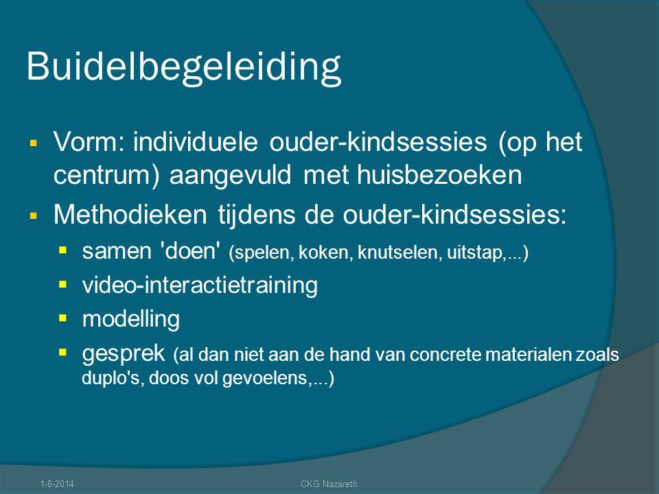 Buidelbegeleiding Vorm: individuele ouder-kindsessies (op het centrum) aangevuld met huisbezoeken. Methodieken tijdens de ouder-kindsessies: